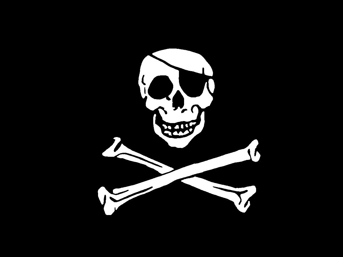 Pirate Flag pirate flag